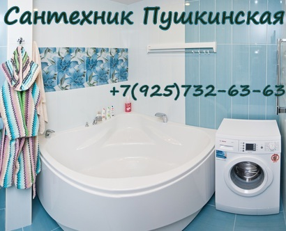 Сантехник Пушкинская